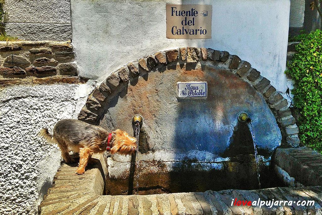 Imagen de Capileira 09. Publicada en Facebook por I Love Alpujarra